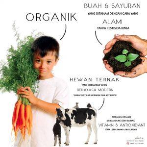 instagram-makanan-organik